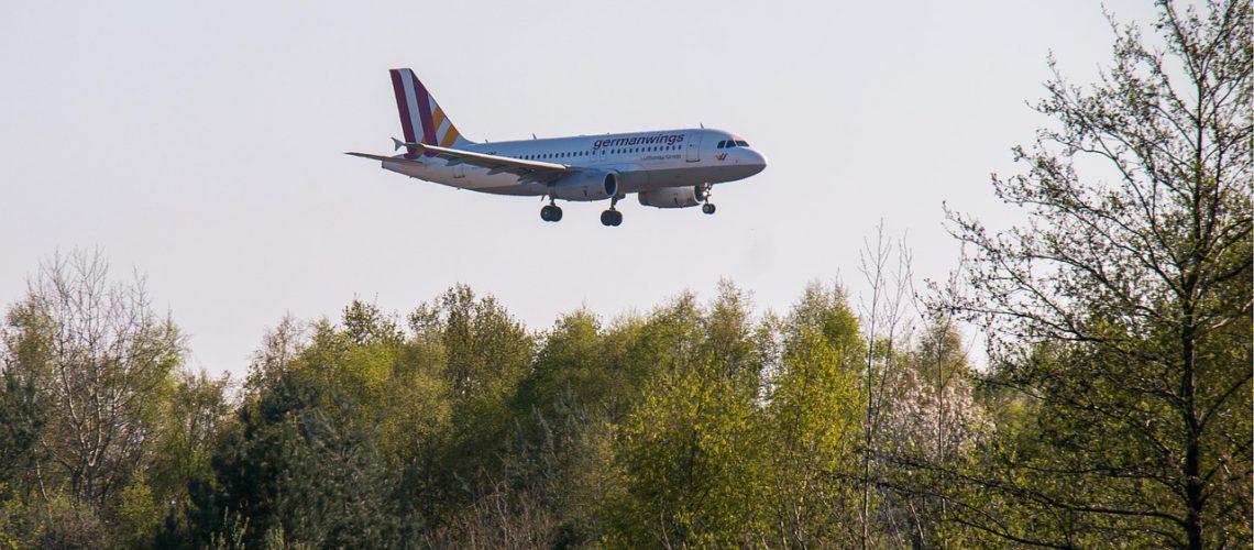 מטוס מעל יער